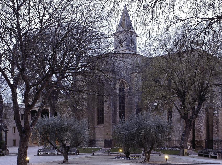 Monasterio de Santa Maria de Bellpuig de les Avellanes.  (Chopo (Javier García-Diez))