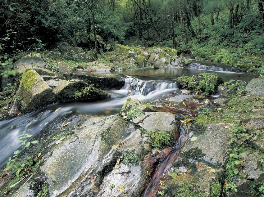 Ruisseau près de Susqueda.  (Kim Castells)