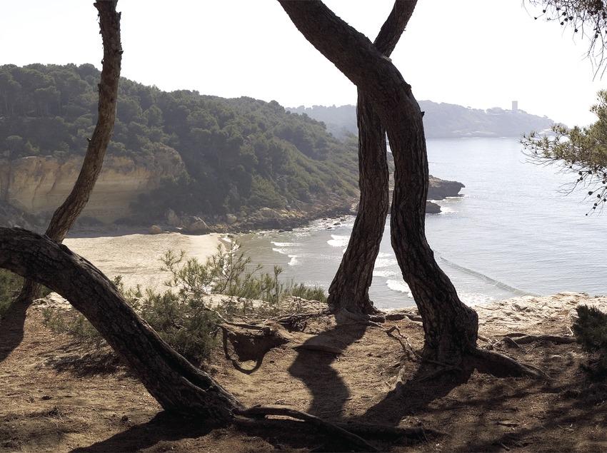 Playa de Waikiki 1.  (Miguel Angel Alvarez)