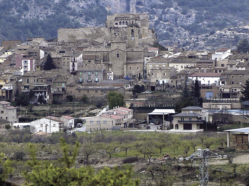 Vineyards and historic centre  (Chopo (Javier García-Diez))