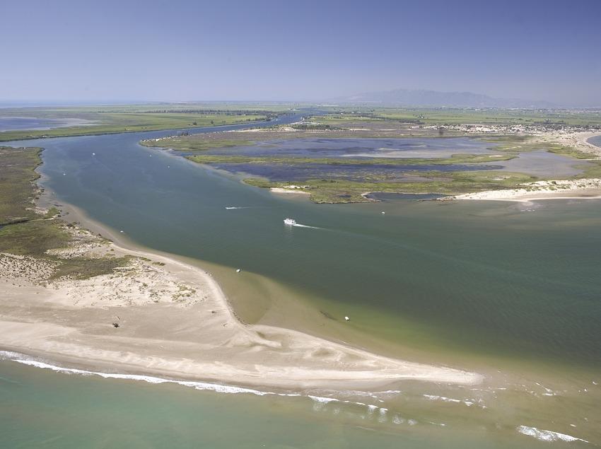 Desembocadura del río Ebro 1.  (Miguel Angel Alvarez)
