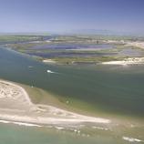 Desembocadura del riu Ebre 1.
