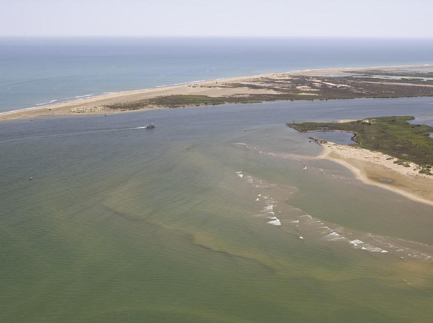 The Ebro Delta  (Miguel Angel Alvarez)