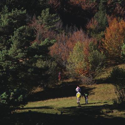 Bassa d'Olès, Vall d'Aran