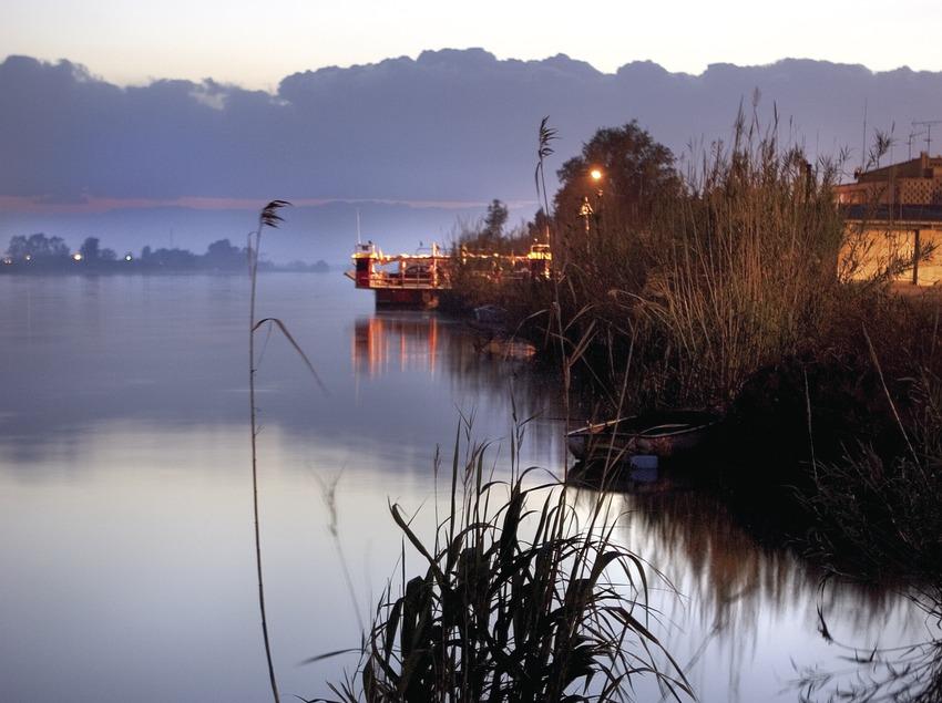 The Ebro delta 4