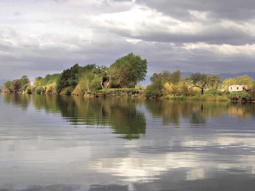 The Ebro delta 3