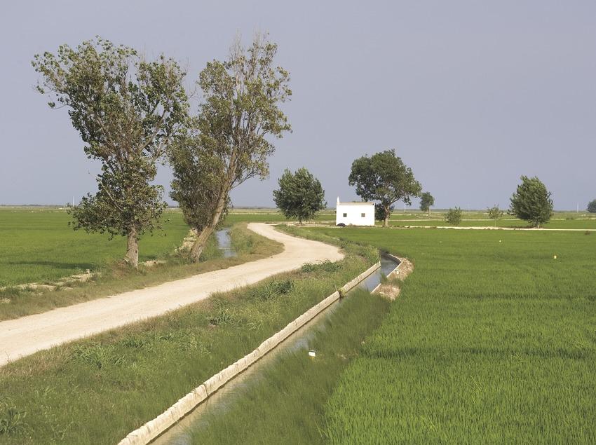 Naturpark Delta de l'Ebre.