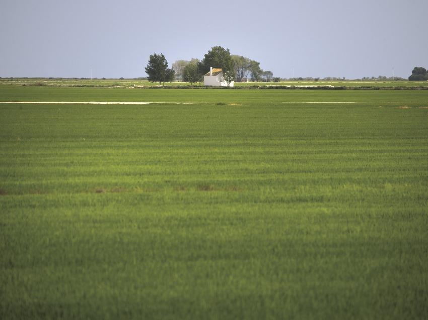 The Ebro Delta Nature Park