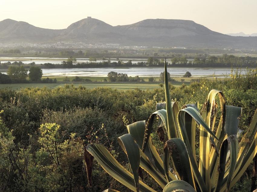 Die Medas-Inseln aus der Sicht von Pals.  (Miguel Angel Alvarez)