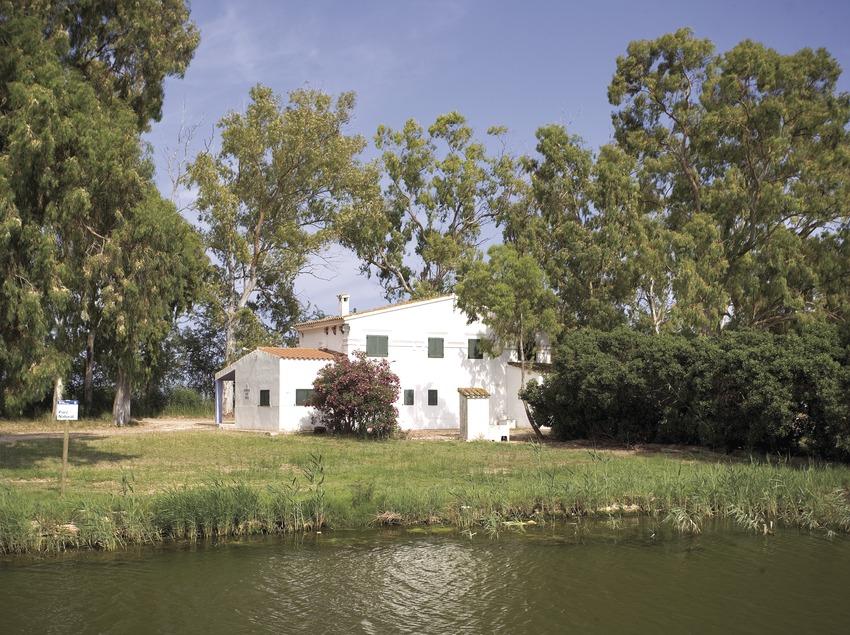 Isla de Buda, en el Parque Natural del Delta del Ebro.  (Miguel Angel Alvarez)