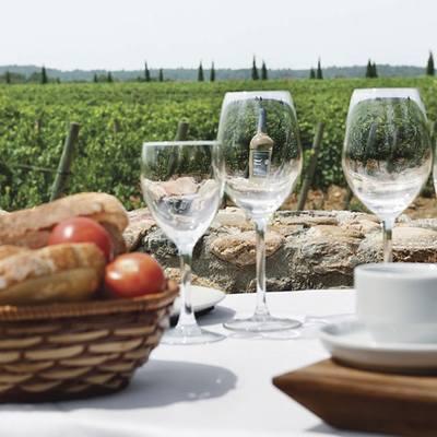 Una mostra de l'esmorzar entre vinyes al Celler La Vinyeta