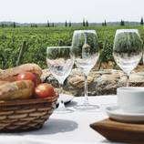Esmorzar entre vinyes amb visita i tast