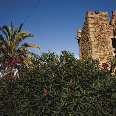 Montgat. Torre de Guaita de Can Alzina (Josep Cano. Diputació Barcelona)