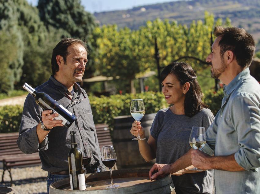 Cata de vins a les caves Castellroig.