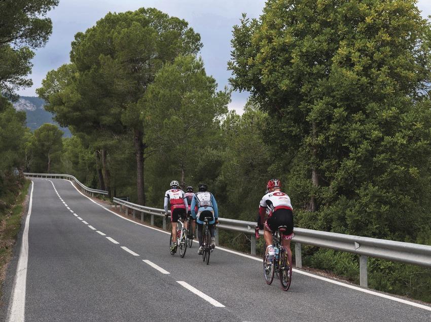 Cliclistes de la Costa Daurada enfilen, entre pins, per la carretera T-322, poc transitada.
