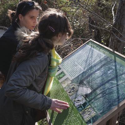Invidents llegint un panell adaptat. Reserva Natural de Fauna Salvatge de Sebes i Meandre de Flix. (Dani Codina)