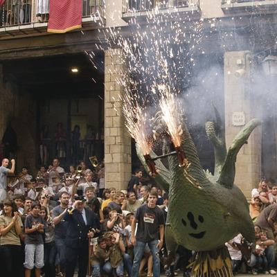 Ball del Drac, Festa Major de solsona