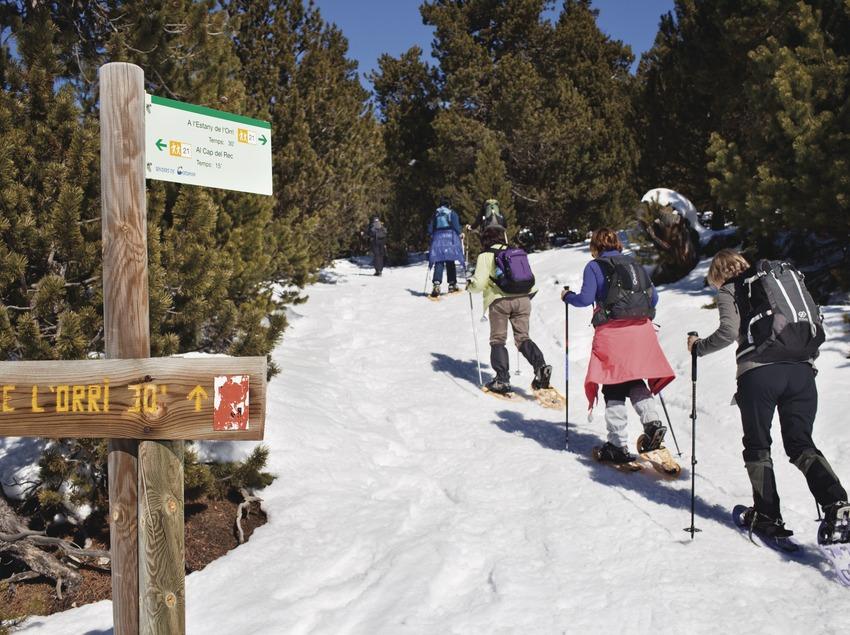 Raquetes de neu a Lles de Cerdanya. (Oriol Clavera)