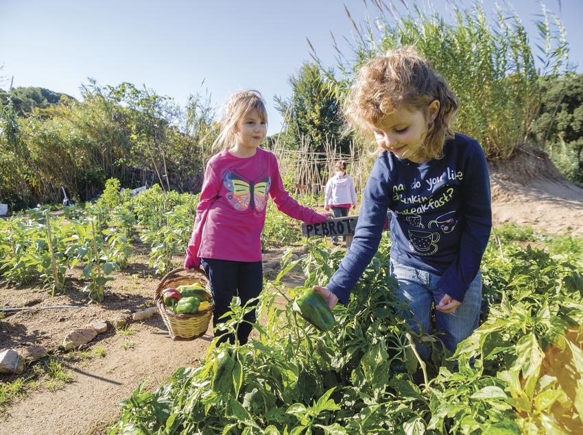 Nenes a l'hort ecològic de la Fundació Marpi. (Nuria Puentes)
