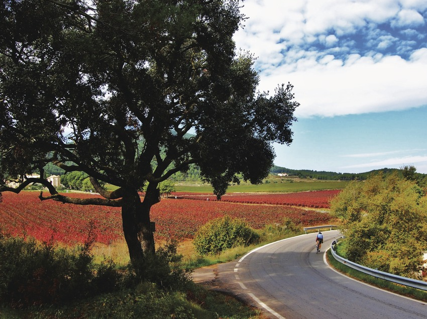 Ciclista a Aiguaviva. (Maria Rosa Ferré)