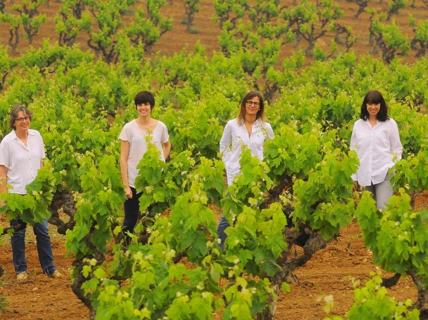 Segona generació del celler Vins El Cep a la vinya.