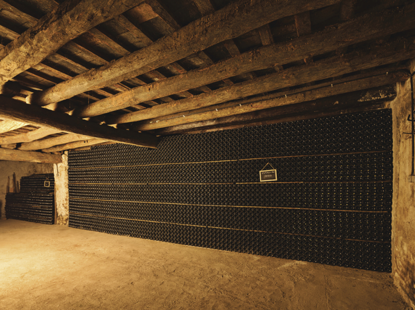 Interior de les caves del celler Vins El Cep.