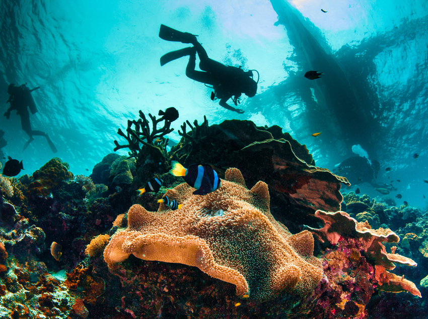 Submarinistas en la Costa Brava.