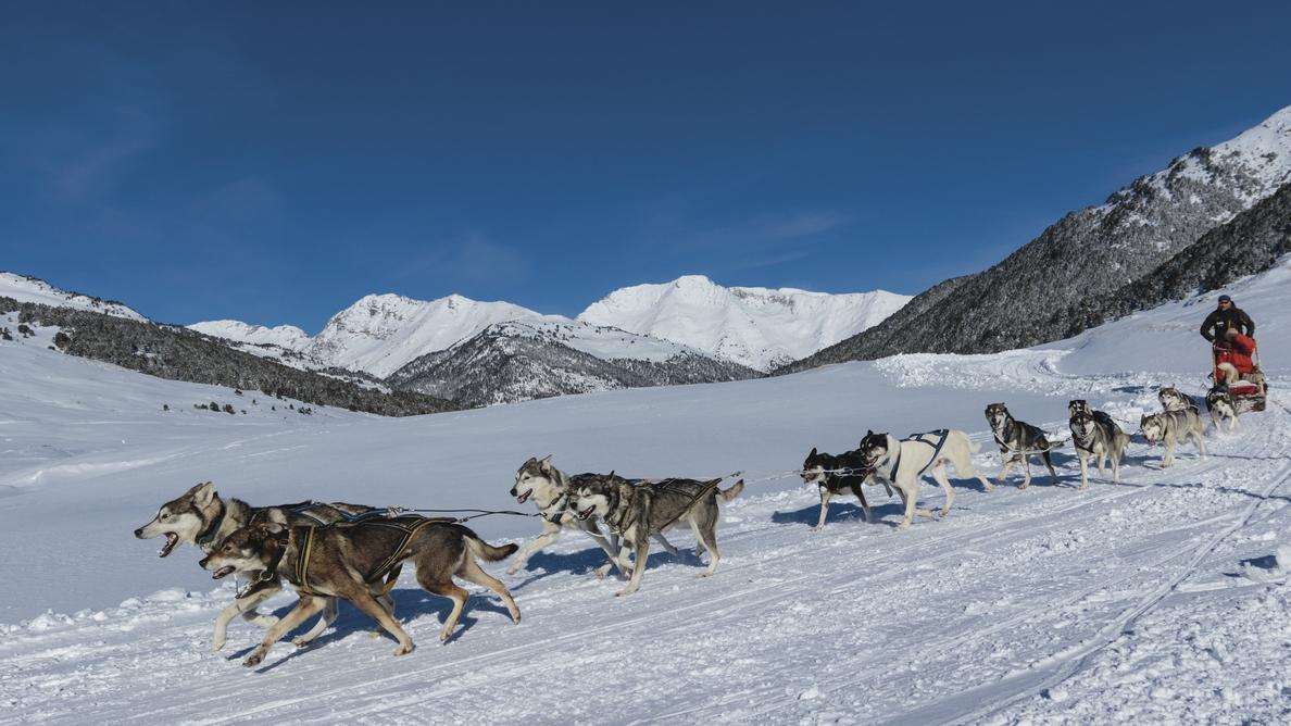 Hundeschlittenfahrt im Val d'Aran © Christopher Willan Photography