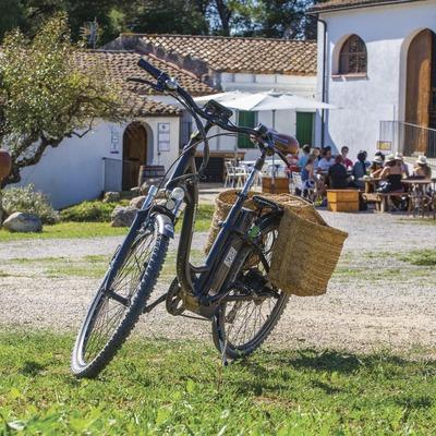 Dos burricletas aparcadas en las viñas de Cava Guilera. (Consuelo Bautista)
