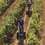 Paseo en segway por las viñas de J Miquel Jane. (Consuelo Bautista)