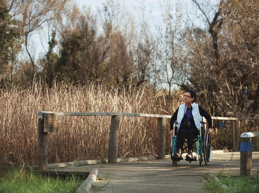 Accessibilitat per persones amb mobilitat reduïda i guies en braile per gent invident. Aiguamolls de l'Empordà.