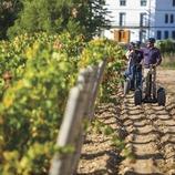 Paseo en segway por las viñas de J Miquel Jane.