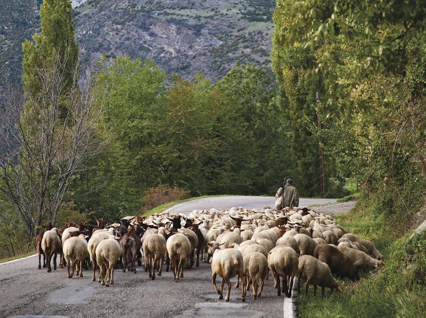 Taüll. Vall de Boí. Pyrenees. Alta Ribagorça. Lleida. Catalonia. Spain Taüll Valle de Boí. Alta Ribagorça Lerida. Lleida Cataluña. Catalunya España
