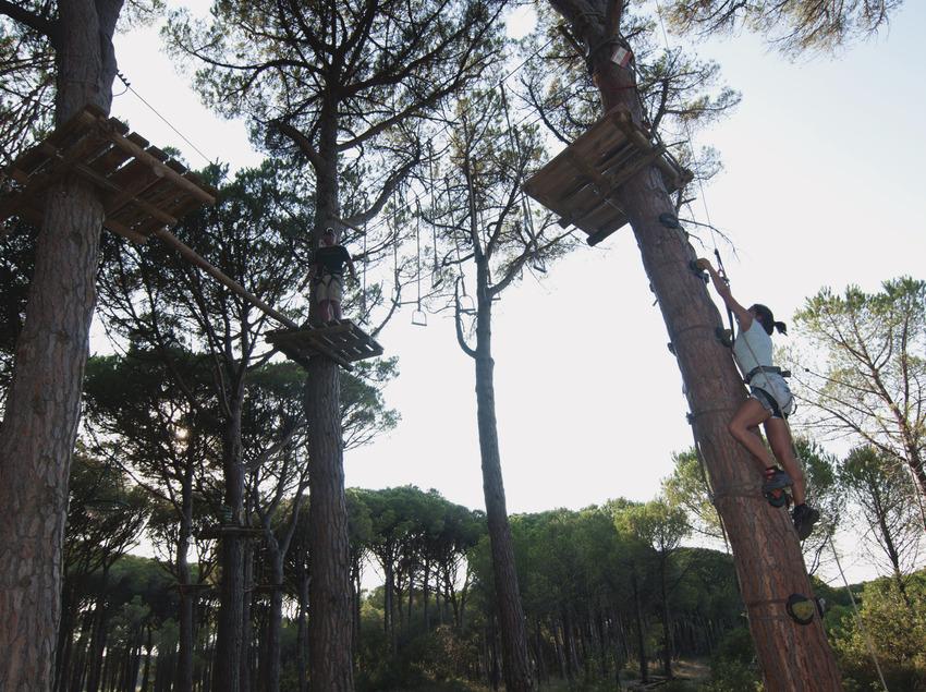 Noia pujant a un arbre per iniciar el circuit penjant