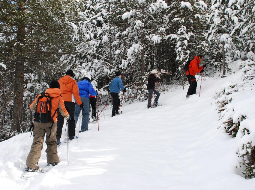 Grup d'excursió amb raquetes de neu