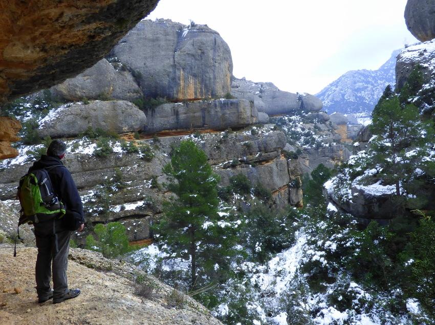 Excursionista fent una parada per contemplar el paisatge nevat