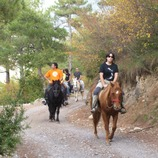 Grupo de personas en un camino haciendo una ruta a caballo.