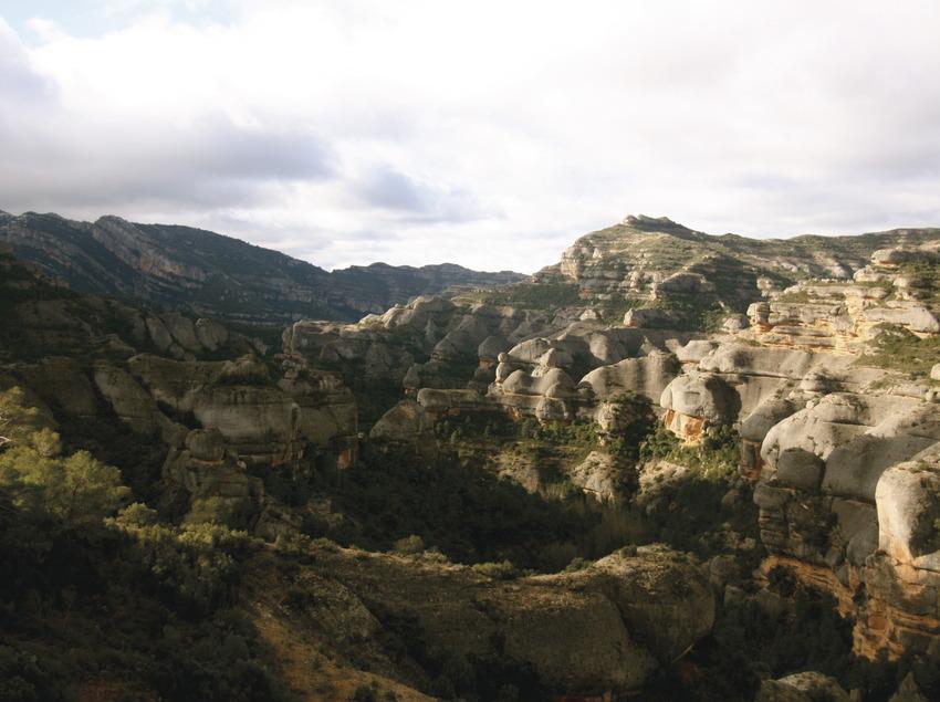 Congost de Fraguerau. Parc Natural del Montsant   (Judit Sabater)