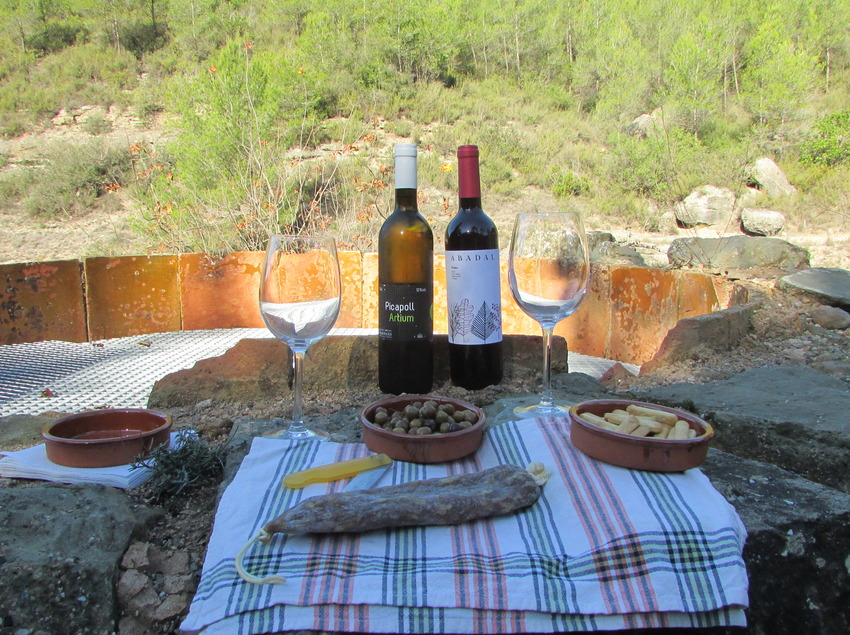 Bages tierra de vinos. Muestra de productos de la tierra.