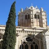Els vins catalans de la Plana de Lleida
