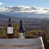 Cultura ecológica y Batalla del Ebro - ruta enoturistica