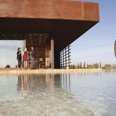 Cellers Torres - Tast de vins catalans i passeig entre vinyes