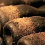 Les edats del cava, ruta enoturística