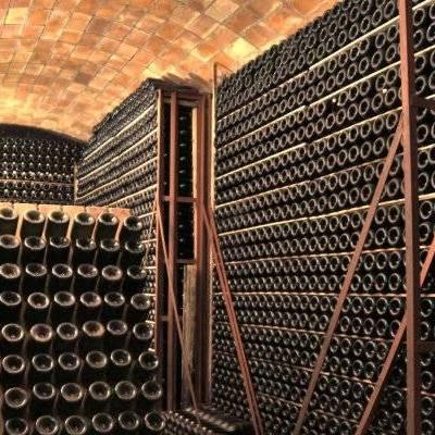 Brunch entre vinyes, viu l'enoturisme