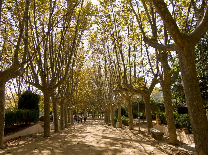 Parque Dalmau de Calella (Ajuntament de Calella)