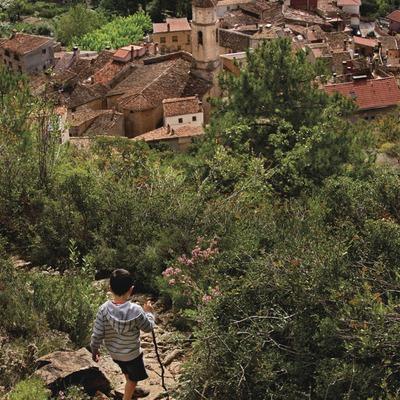 Camí de l'Ermita de Sant Pau d'Arbolí. Serra de la Mussara, Muntanyes de Prades. Arbolí, Baix Camp, Tarragona . (Rafael López-Monné)