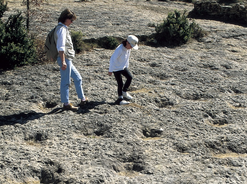 Huellas de dinosaurio en el yacimiento de la Posa.  (Turismo Verde S.L.)