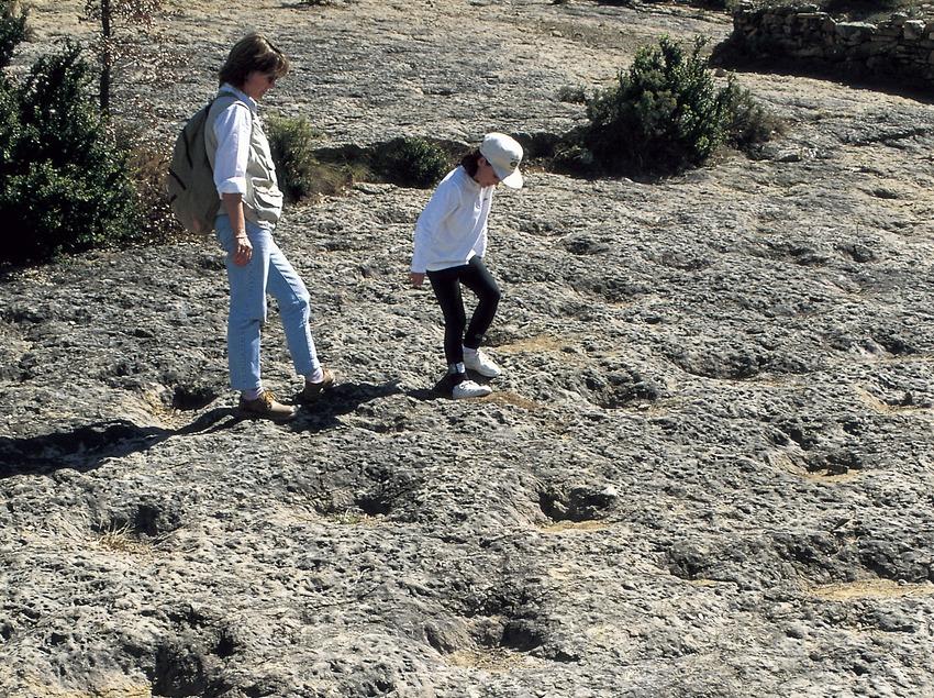 Petjades de dinosaure al jaciment de la Posa.  (Turismo Verde S.L.)
