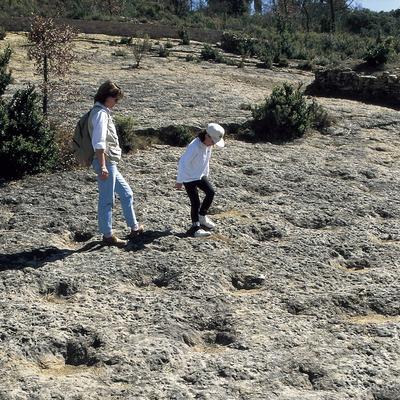 Petjades de dinosaure al jaciment de la Posa.