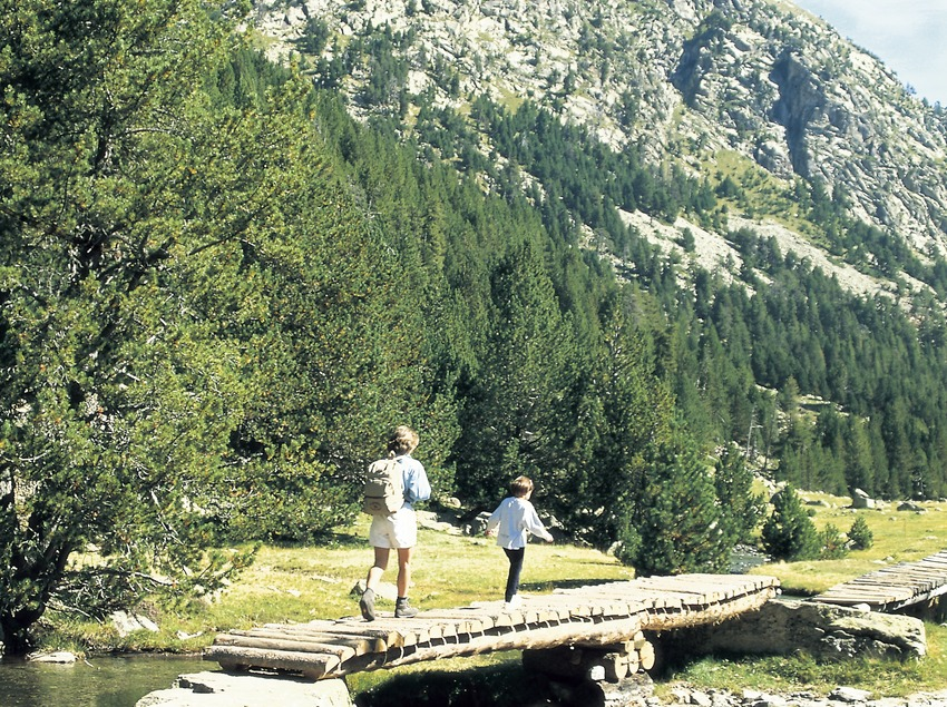 Confluencia de Sant Nicolau en el Parque Nacional de Aigüestortes i Estany de Sant Maurici.
